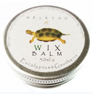 wix-balm-2017